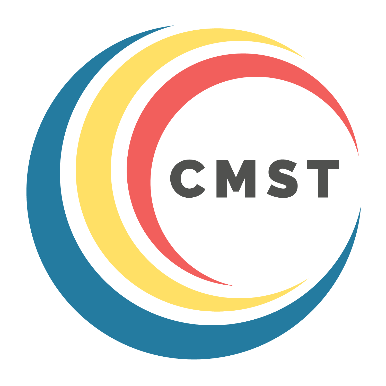 Consultancy Manager (CMST) Support